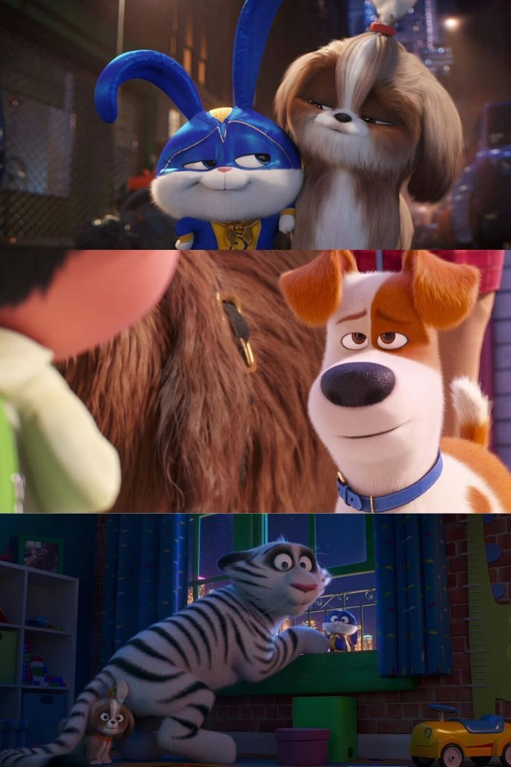 The Secret Life Of Pets 2 Movie 2019 ในป 2020