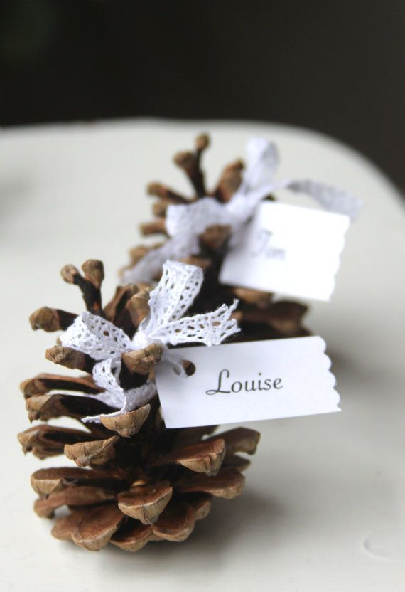 Pine cones and ribbon