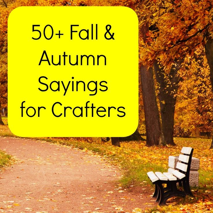 25+ Best Ideas About Fall Sayings On Pinterest