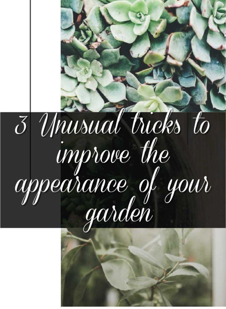 Create a master garden unique gardens garden unusual