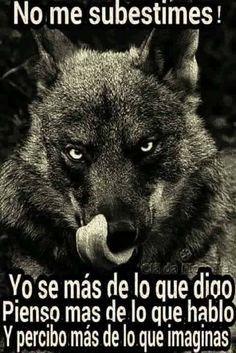 Resultado de imagen de frases celebres con lobos