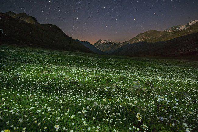 Letní noc se snáší na rozkvetlou alpskou loukou. Vrušné zemi na zalidněném kontinentu je neposkvrněná krajina parku Gran Paradiso učiněnou idilickou oázou.