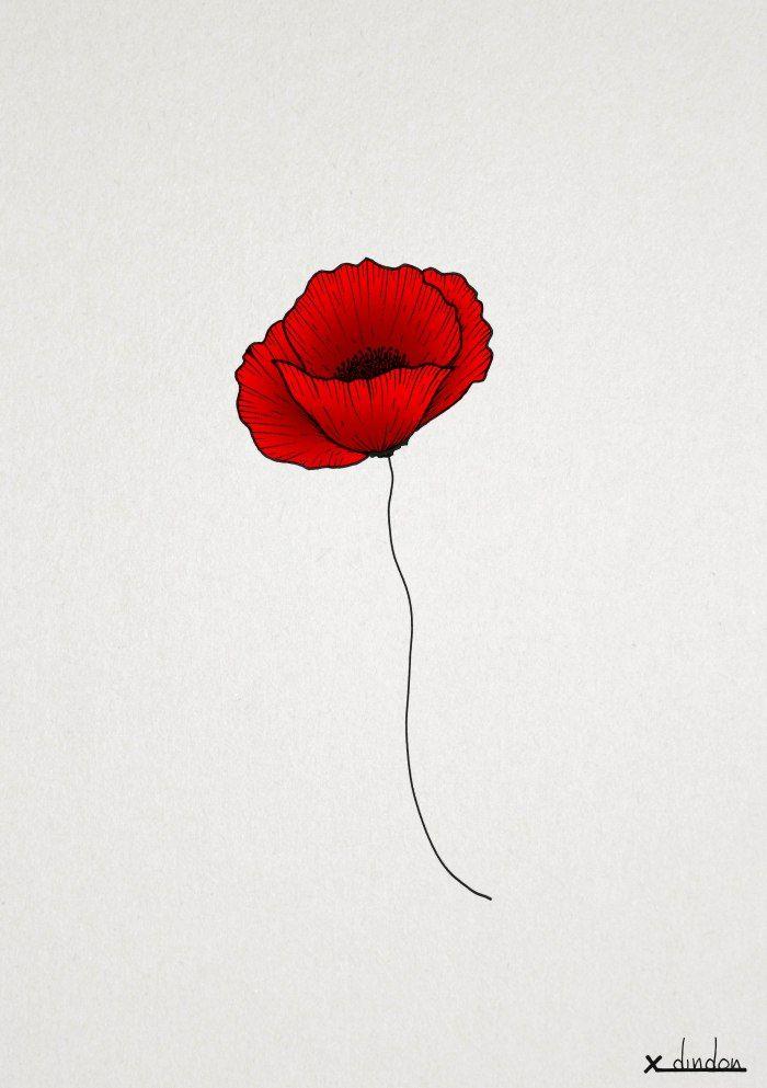 Poppy_red Mais