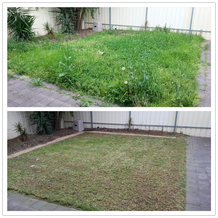 Weeding, Mowing, Edging and Spraying. What can Trusted do for you?