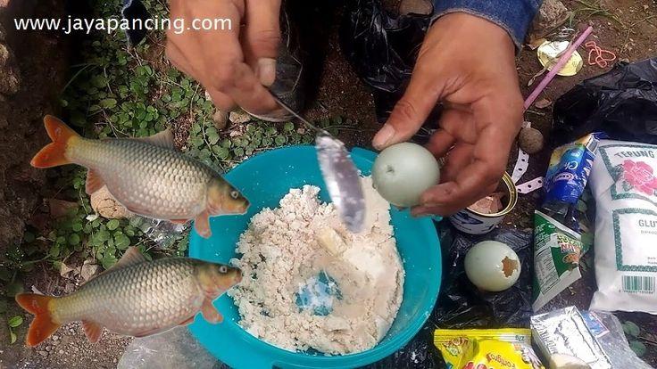 Racikan umpan dadakan ikan mas khusus untuk para pemancing yang ingin buat umpan ikan mas yang simple dengan menambahkan Aquatic Essen agar aroma umpan lebih kuat dan ikan akan tertarik untuk melahap umpan dengan cepat dan mudah.