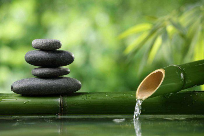 Vous rêvez d'un coin de relax et de méditation? Voyez ici comment adoptez la déco de jardin zen. Plein de photos et conseils utiles dans l'article suivant!