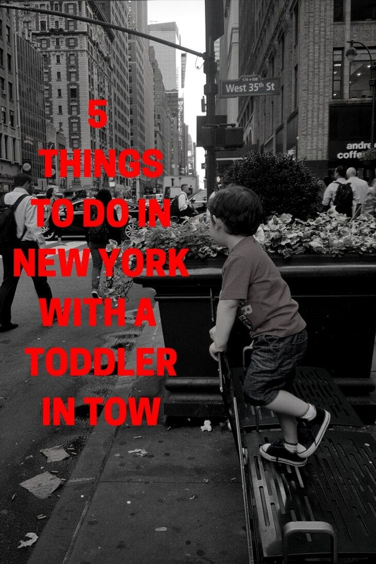 5 THINGS TO DO IN NEW YORK WITH A TODDLER IN TOW