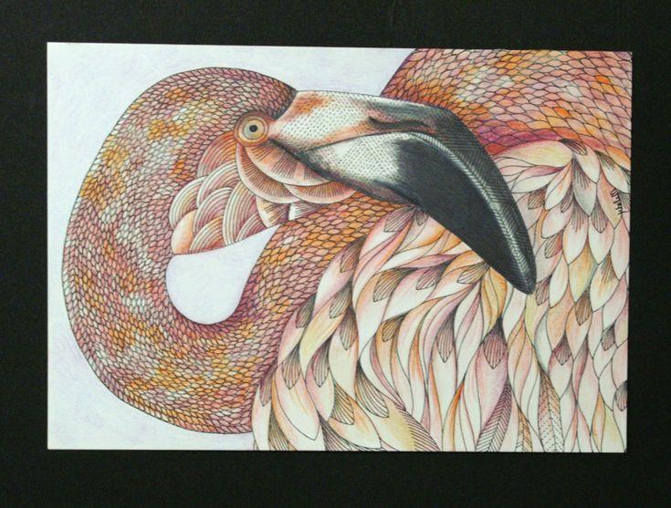 Ben Franklin Crafts And Frame Shop Animal Kingdom Adult Coloring