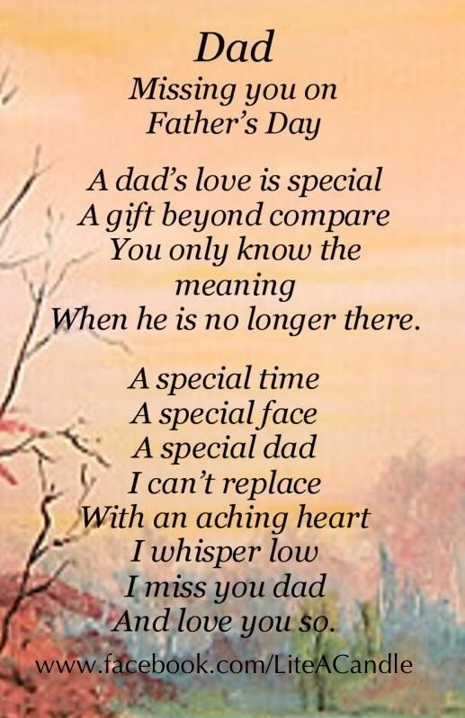 happy not a father's day poem