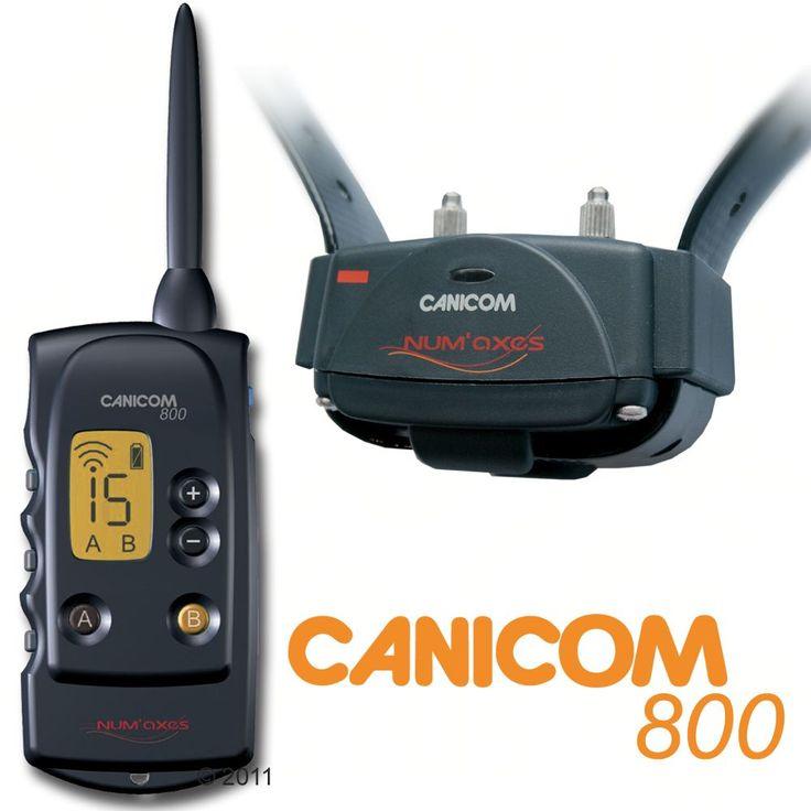 Animalerie  Canicom 800  collier de dressage pour chien avec télécommande  collier éducatif avec télécommande
