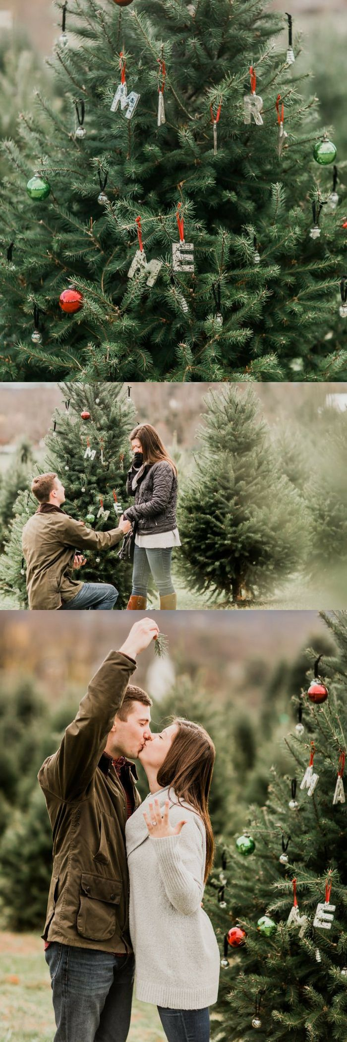 Engagement ring box christmas ornament - Paige And Aj S Christmas Tree Farm Proposal On Howheasked Com