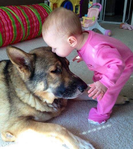 Moment Tendresse Enfant et Chien