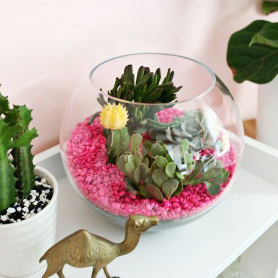 So easy! Add aquarium gravel to a planter for colorful look!