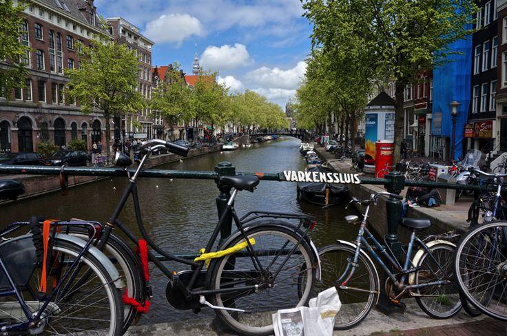 Amsterdam - Keukenhof -The Netherlands - TGS Pictures