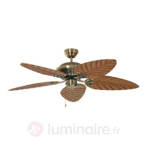 Ventilateur de plafond décoratif Downunder, référence 2513020 - Ventilateurs de plafond ou à poser chez Luminaire.fr !