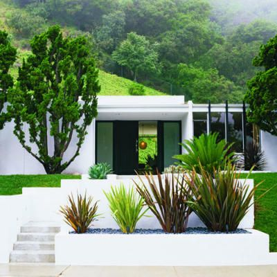 Modern style garden & curb-side entrance, classic midcentury abode-Sherman Oaks, California