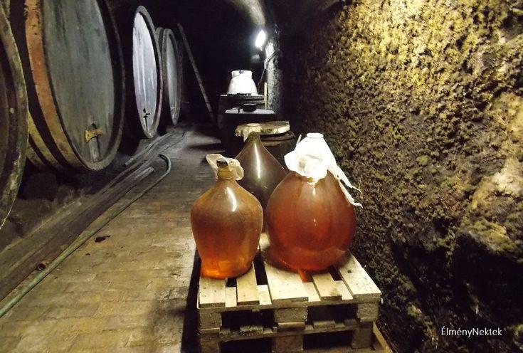 Két soproni, több száz éves borospincébe is bekukkantunk és felidézünk néhány borral kapcsolatos városi emléket, legendát. Ezt a túrát a borélményt keresők, poharazgatni indulók fogják kedvelni. Útravalónak pedig álljanak itt egy többgenerációs helyi borosgazda gondolatai: A borkóstolás művészet.…