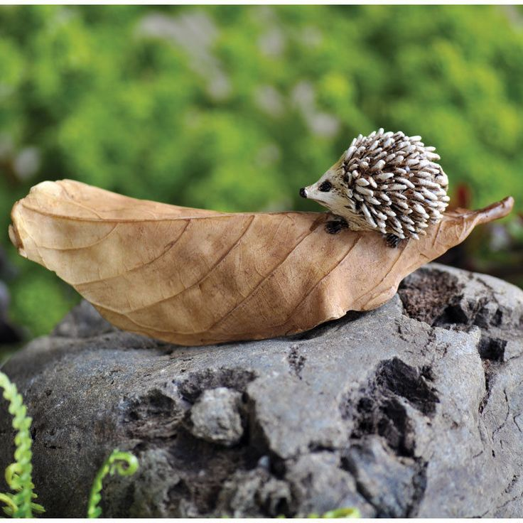 Hedgehog: Fairy Garden Miniature: Retiring