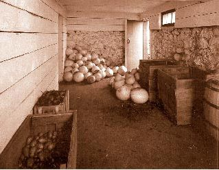 Amish Food Storage The Cold Cellar For Winter Of Potatoes