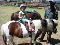 Jungle Tots Farmyard & Party Venue