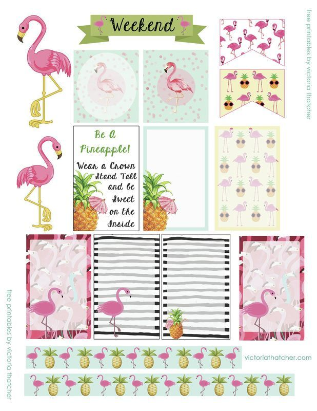 FREE PRINTABLES Flamingo Happy Planner stickers