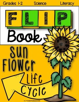 Super easy to assemble Sunflower Life Cycle Flip Book!