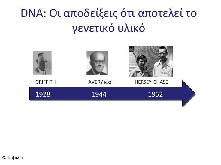 DNA: Το γενετικό υλικό