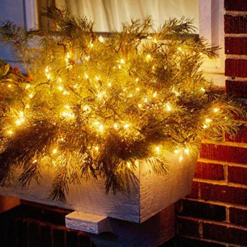 HOLIDAY LIGHTS IN A WINDOW BOX. There are lots of short string battery-powered lights out there ...