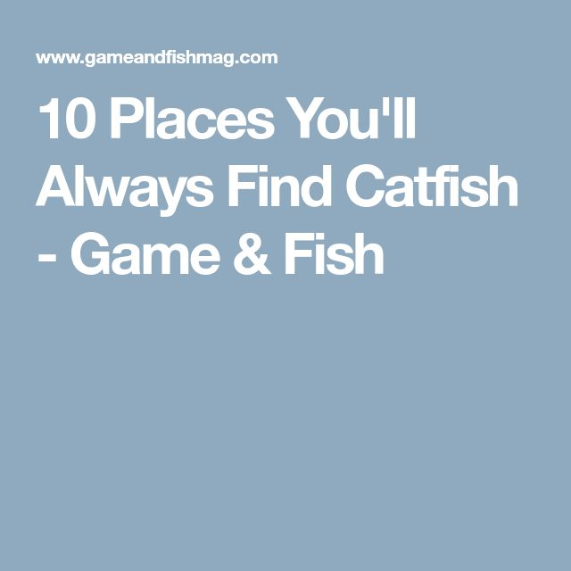 10 Places You'll Always Find Catfish - Game & Fish