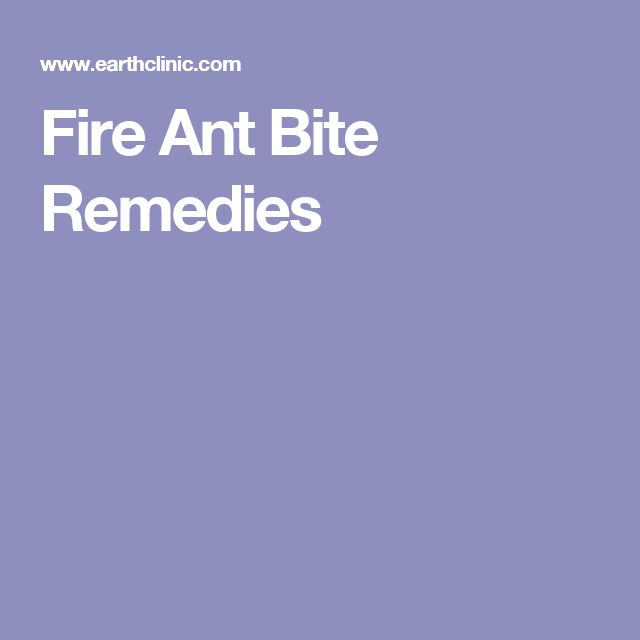 Fire Ant Bite Remedies