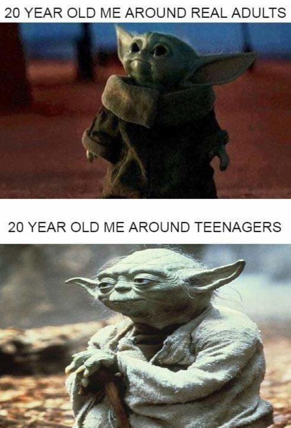 Just Like A Normal Day For Me R Babyyoda Baby Yoda Grogu Yoda Meme Funny Pictures Funny Babies