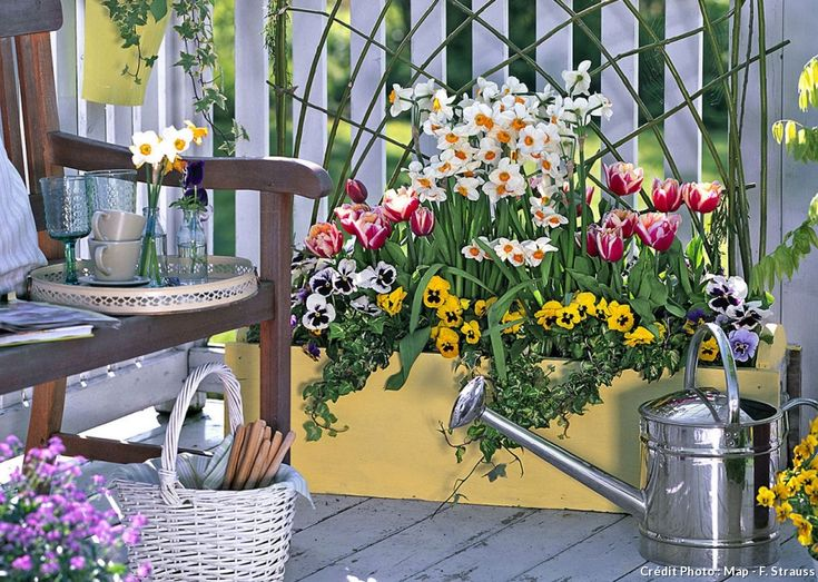 Réaliser une jolie jardinière de printemps