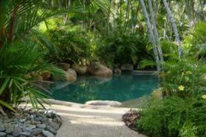 12 best images about piscinas naturales on pinterest for Como hacer una piscina natural en casa