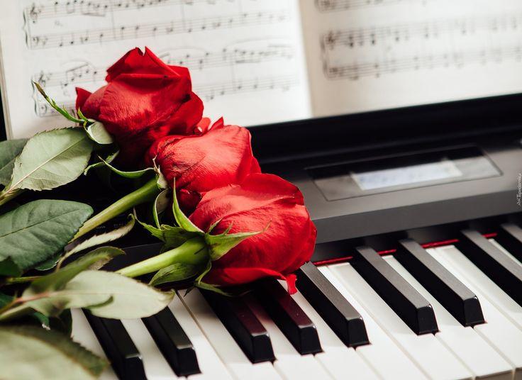Róże, Pianino, Klawisze, Nuty