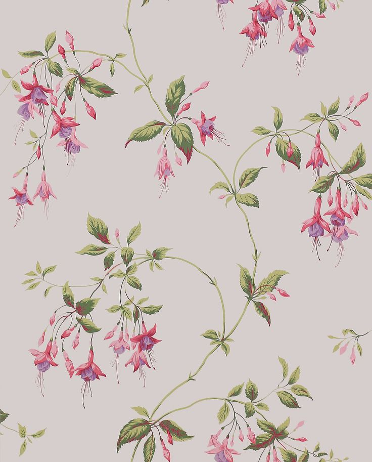 Colefax and Fowler Octavia Pink / Green Wallpaper main image
