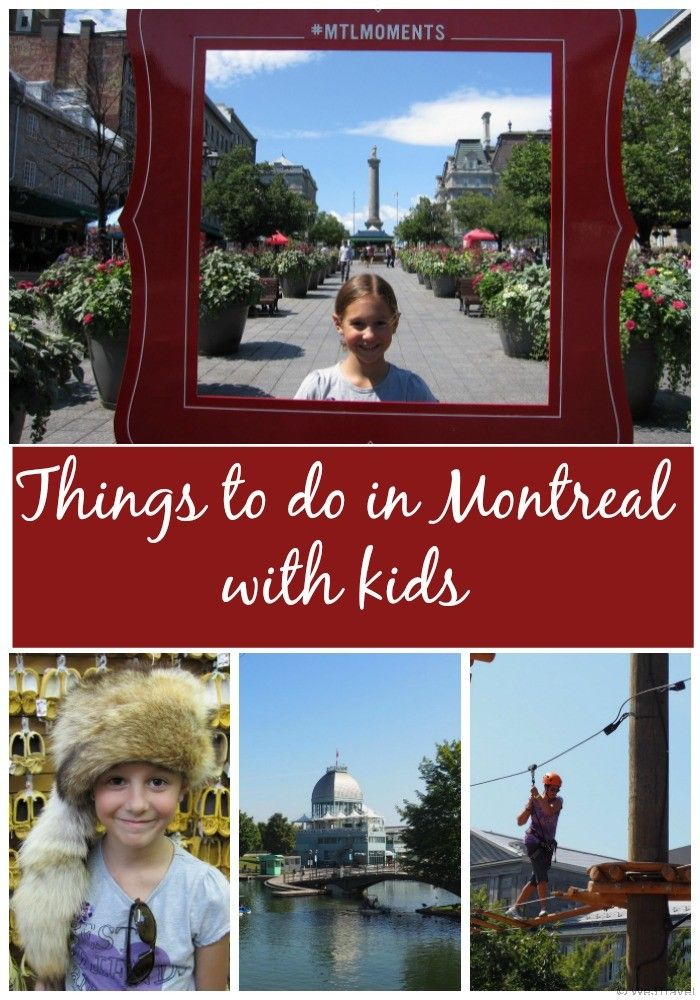 Montreal is a great place to visit in the summer, especially now with the weak Canadian dollar it is even cheaper for Americans to get that little slice of Europe. Here are some suggestions on what to do in Montreal with kids including ziplining, biking, swimming, visiting the Biodome and Botanical Gardens and more.