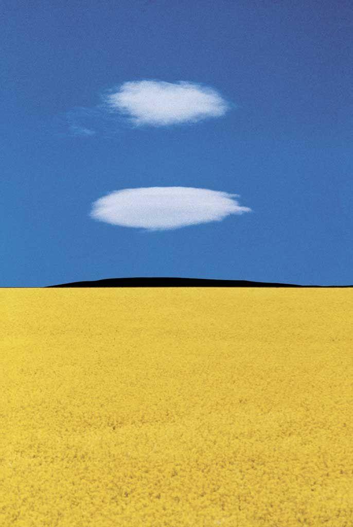 semplicemente #bright - Franco Fontana
