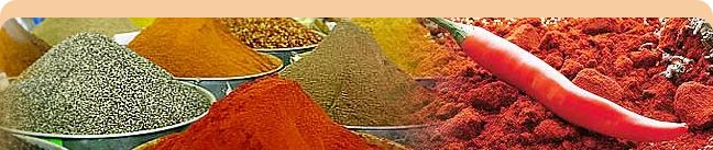 Ramdev Food Products Pvt. Ltd - Indický výrobca veľa informácií o indických koreninách