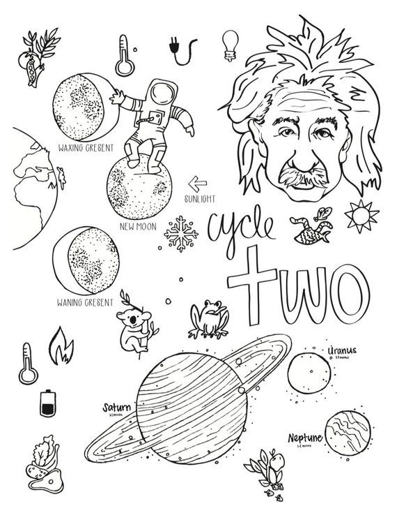 Cycle 2 Science Coloring Pages 5th Edition Etsy In 2021 Coloring Pages Coloring Books History Drawings