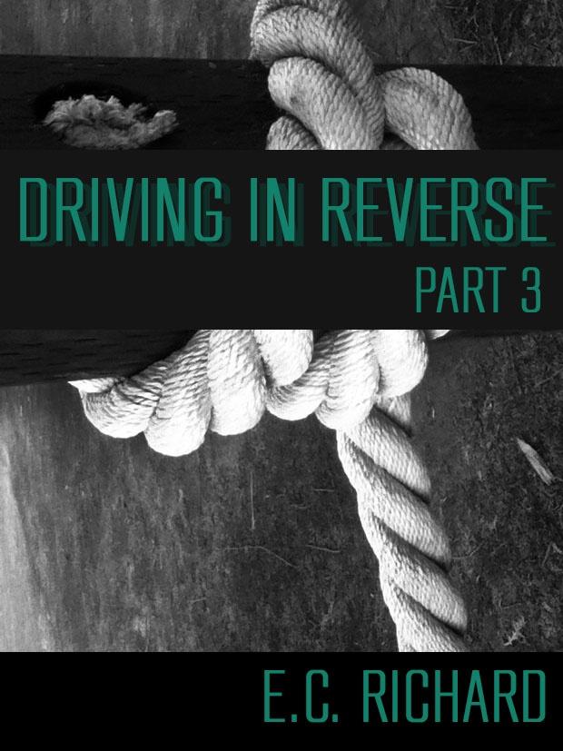 http://www.amazon.com/Driving-Reverse-Part-3-ebook/dp/B008G326IC