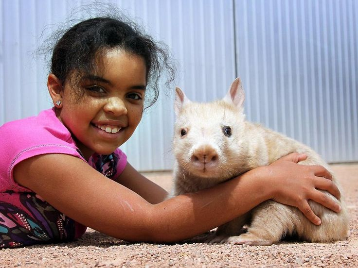 Ceduna's Lucia Franks with Polar the Rare White Southern Hairy Nosed Wombat at the Ceduna Wombat and Fauna Rescue Centre.
