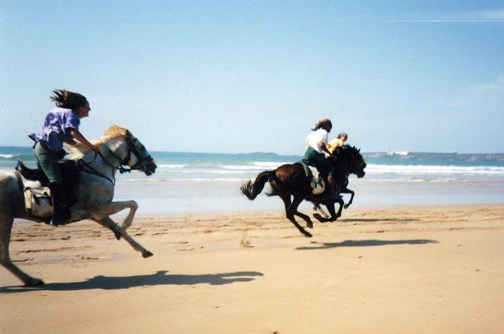 Les cavaliers d'Essaouira: chevaucher des étalons arabes sous le soleil marocain!