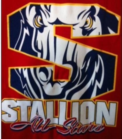 stallion t shirt  #stalliontshirt  #cheaptshirtprinting