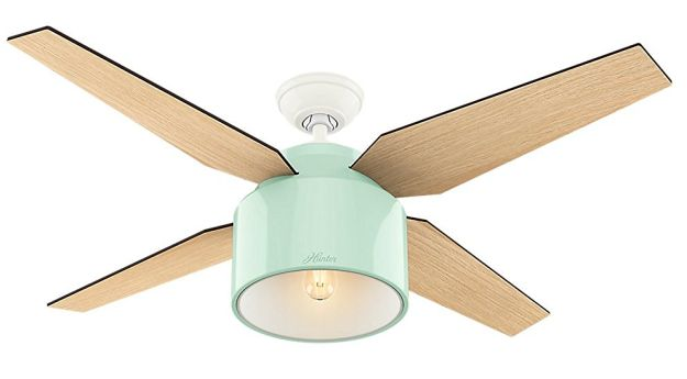 "A ""whisper-quiet"" ceiling fan in a lovely shade of mint (with oak blades). 