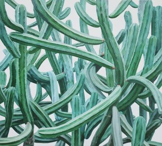 Cactus No.66, KWANGHO LEE