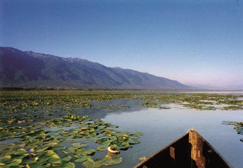 Visit Greece | An escape to Lake Kerkini