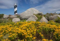 Things To Do in Cape West Coast - North Head Lighthouse, Saldanha Bay, Western Cape, South Africa