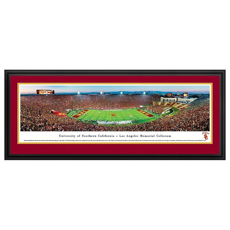 South Carolina Gamecocks Football Stadium Framed Wall Art, Multicolor