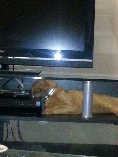 Underneath the tv