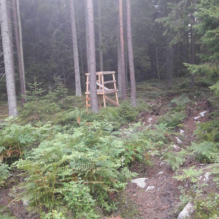 Första inlägget nu då, idag har vi varit och satt ut torn på marken. Mycket jobb avklarat men mycket kvar. Men vad gör man inte för jakten;)//Isak #jaktsäsong2017 #swe_hunters #jakt #jakttorn #jaktsugen #jakt #hunt #huntinginsweden #pass #huntingstand http://misstagram.com/ipost/1568420605203975470/?code=BXEJjsHlg0u
